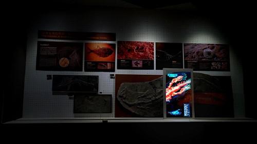 展厅展馆设计公司.jpg